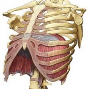 Postura-della-testa-e-ansia-si-influenzano-a-vicenda-2-300x300