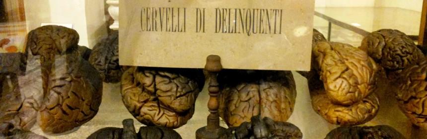 torino-museo-di-anatomia-umana-860x280