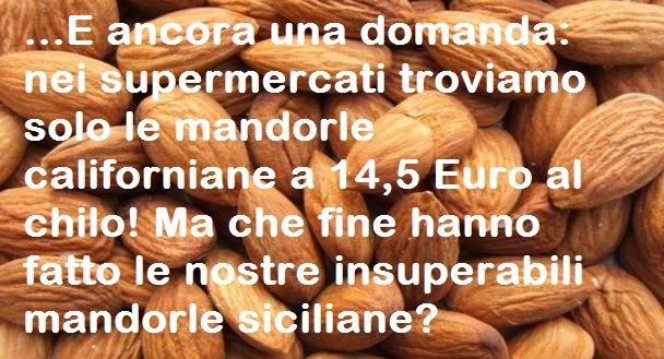 96894_mandorlecaliforniane