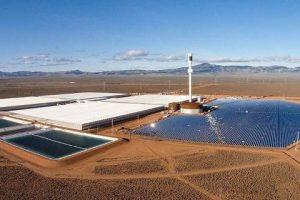 Azienda agricola nel deserto coltiva 17000 tonnellate di cibo senza terreno fertile, pesticidi, combustibili fossili e acquedotti