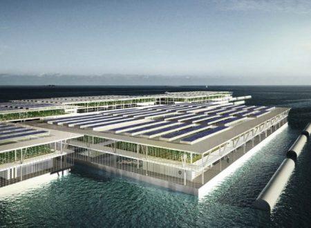 La fattoria galleggiante a energia solare in grado di produrre 20 tonnellate di verdura al giorno