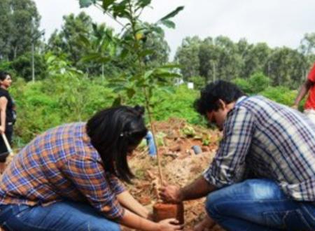 Piantare un albero invece di pagare tasse scolastiche: La soluzione di una scuola indiana.