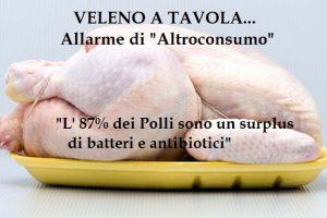 """Allarme di""""Altroconsumo"""": Batteri resistenti ad antibiotici nell'84% della carne di pollo. ATTENZIONE"""